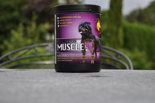 ProDog Muscle + - Усовершенствованный гейнер для наращивания сухих мышц